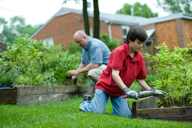 How to Tend the Garden for Dementia Patients